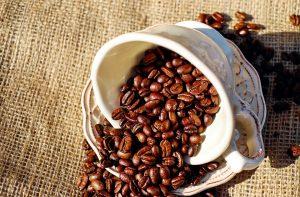 القهوة والحامل