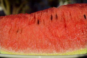 البطيخ وفوائده