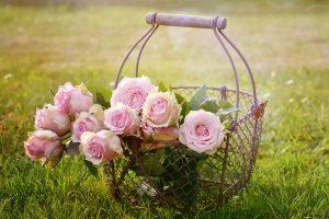 إستنشق الورد