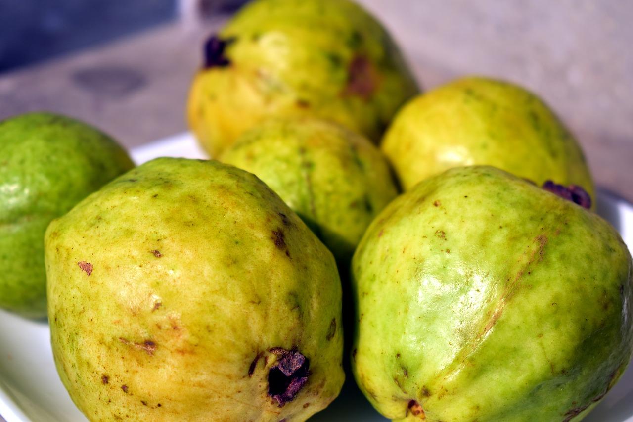 ثمرة واحدة من الجوافة